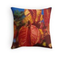Riverside State Park 4 Throw Pillow