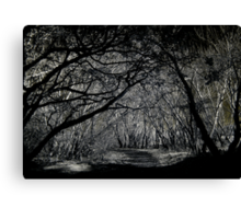 O! Wanderers in the shadowed land Canvas Print