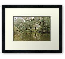 Blackwood River Framed Print