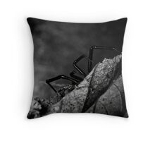 Waiting - B&W Throw Pillow