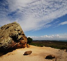 The Agglestone on Studland Heath by delros