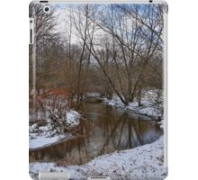 Winter In The Garden State iPad Case/Skin