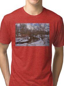 Winter In The Garden State Tri-blend T-Shirt