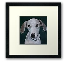 Portrait of a Greyhound Framed Print