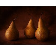 Golden Pears Photographic Print