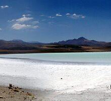 San Pedro De Atacama, Chile by seguel