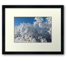 Beautiful Frost and Snow...Christmas Morning 2014 Framed Print