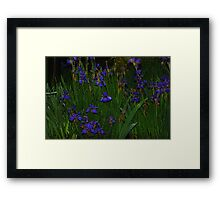 Diamonds at Dusk... Framed Print