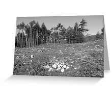 And then there were none ... Greeting Card