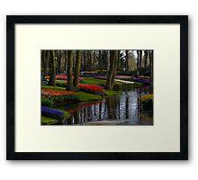 Keukenhof Garden Framed Print