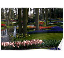 Keukenhof Garden Poster