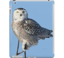 Balancing Talent iPad Case/Skin