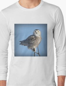 Balancing Talent (with snow) Long Sleeve T-Shirt