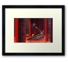 Flying Bully Framed Print