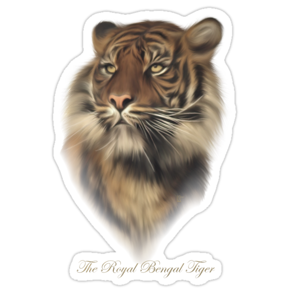 The Royal Bengal Tiger by Lisa  Weber