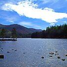 Loch an Eilean II by Tom Gomez