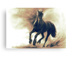Black horse in storm - retouched pencil drawing Canvas Print