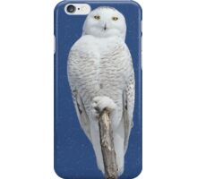 Dreams DO come true (with snow) iPhone Case/Skin