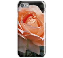 Abbaye de Cluny iPhone Case/Skin