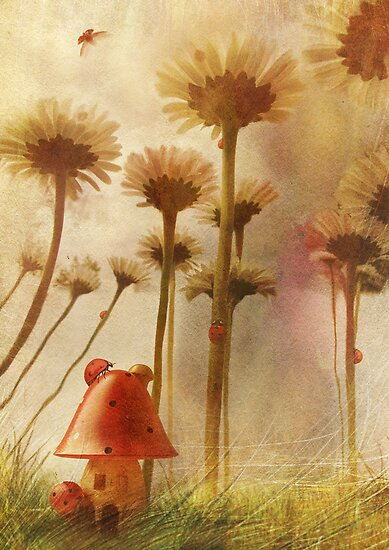 Fly Away Home by Aimee Stewart