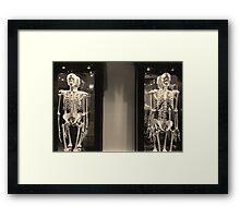Wunderkammer #1: Ancestry Framed Print