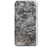 forest trees in hoarfrost iPhone Case/Skin