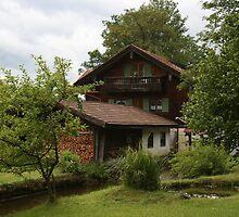 Bayern Home by weallareone