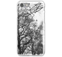 St. James' Park iPhone Case/Skin