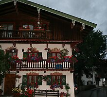 TegenSee House by weallareone