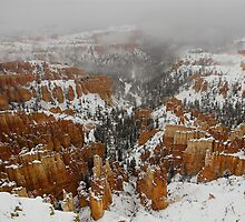 Winter in Bryce, Utah by Tamas Bakos
