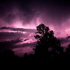 Purple Rain by blackjack