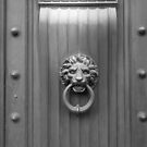 Door with knocker by bubblehex08