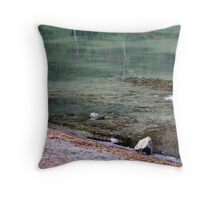 """""""Ghostly Reflections"""" Throw Pillow"""