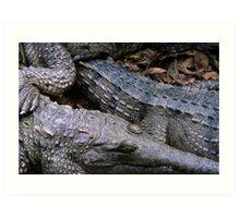 crocs! Art Print