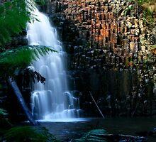 Tasmania, Dip Falls by Angelika  Vogel