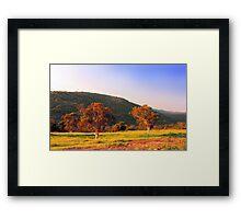Swan Valley - Western Australia  Framed Print