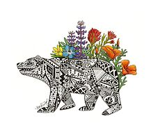 Grizzly Flora by Alexa Finlay