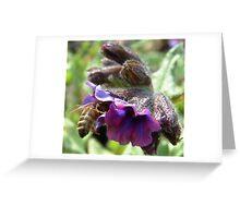 Wasp! Greeting Card