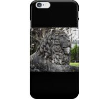 Timeworn Lion iPhone Case/Skin