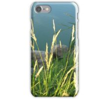 Lakeside Weeds iPhone Case/Skin
