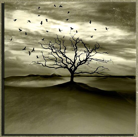 Raven Valley by Jacky