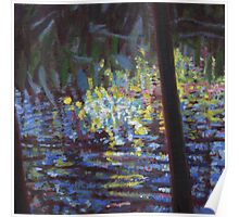 Giverney ripples Poster