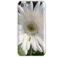 A Closer Look iPhone Case/Skin
