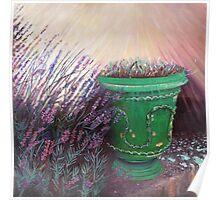 Provencal garden II Poster