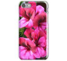 Regal Geranium Bunch iPhone Case/Skin