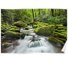 Great Smoky Mountains Roaring Fork Green Cascade Poster