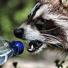Thirsty? by Teresa Zieba