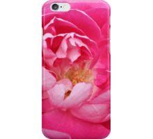 Full Rose iPhone Case/Skin