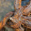 Rusty Thing by Gail Davison