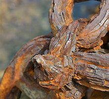 Rusty Thing by Gail Davison